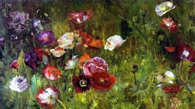 killer-flowers