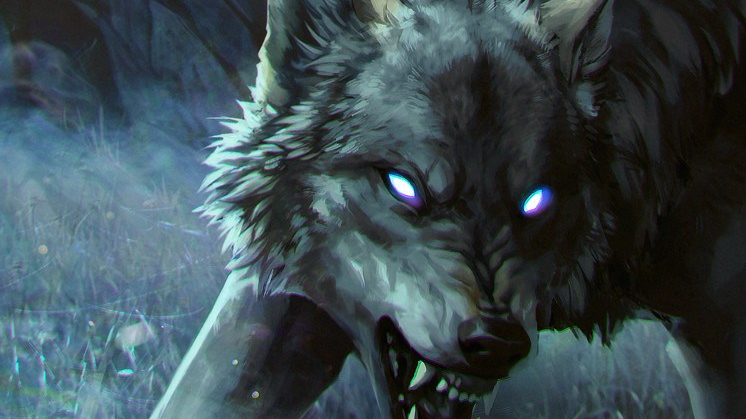 anna-podedworna-wolves