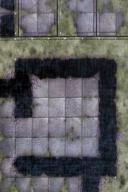 DU5 Sinister Woods 2A