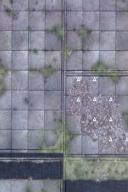DU5 Sinister Woods 6A