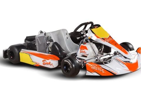 sodi sigma RS3 2019, ideal for briggs and stratton lo2016 , Rotax, and Rok