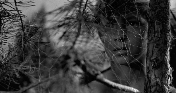 Andrei Tarkovsky: Ivan's Childhood (1962)