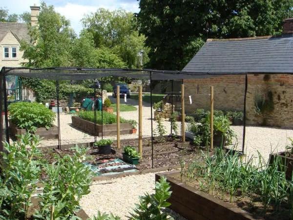 DMW Landscapes Vegetable Garden 4 1