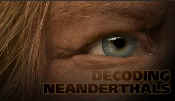 decod neanderthal 1
