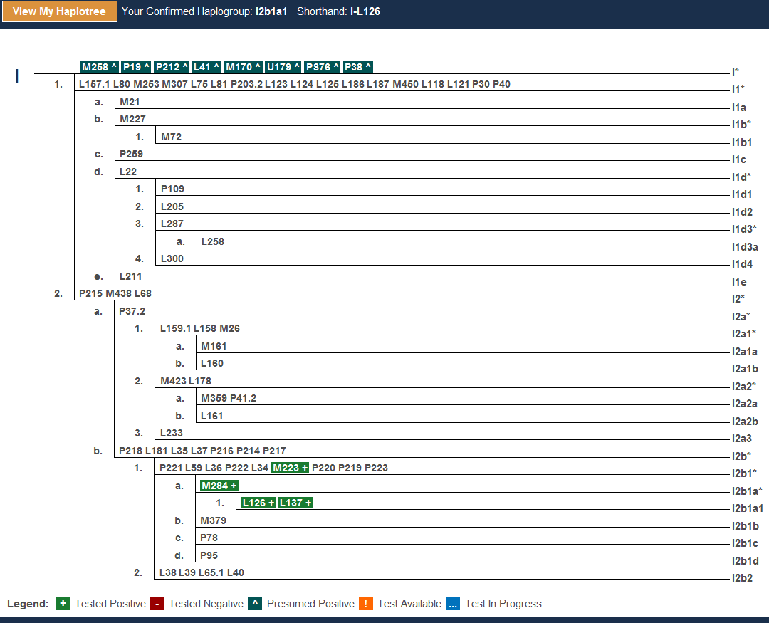 Haplogroups | DNAeXplained – Genetic Genealogy | Page 5