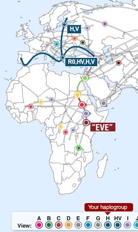hap h migration map