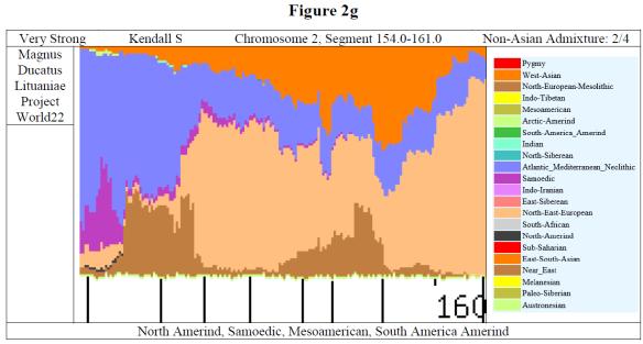Payne graph 5