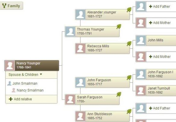 younger pedigree 2