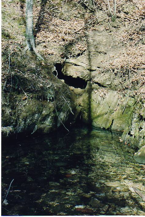 mary parkey clarkson spring