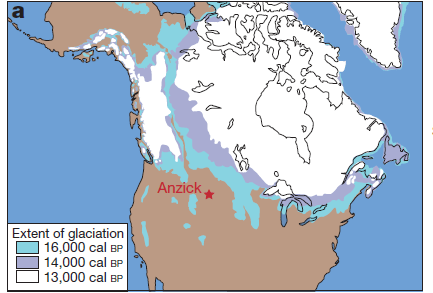 anzick on us map