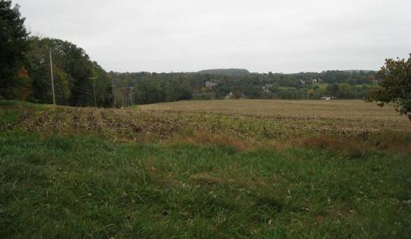 Battle of Brandywine battlefield