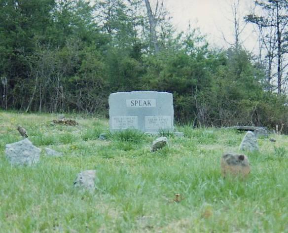 Speak cemetery fieldstones