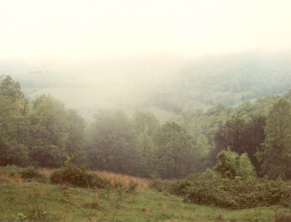 Estes holler mists