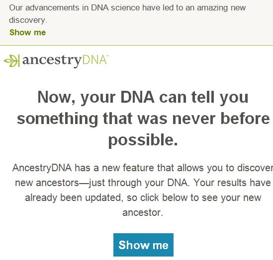 new ancestor e-mail 2