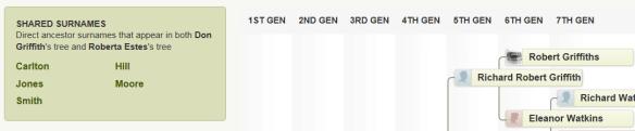 new ancestor match surnames