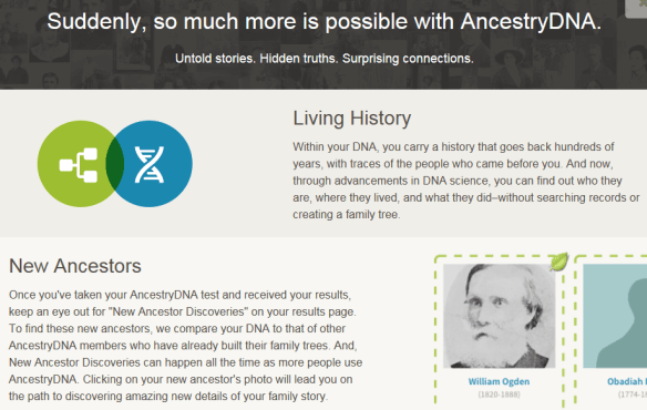 new ancestors