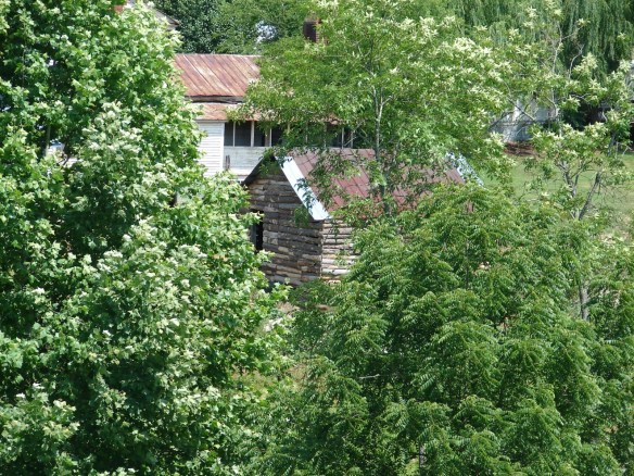 Carter's Station Lick Creek3