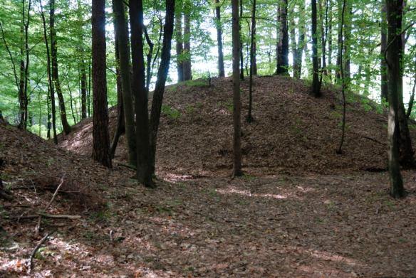 Hallstatt-era tumulus in the Sulm valley necropolis in Austria, photo by Hermann A. M. Mucke.