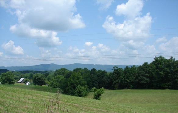 Wesley Chapel valley2