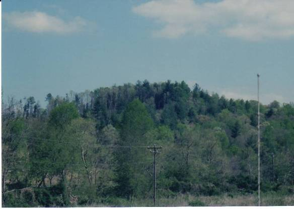 Wilkes Vannoy road landscape