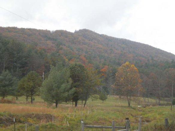 Brush creek fall mountains