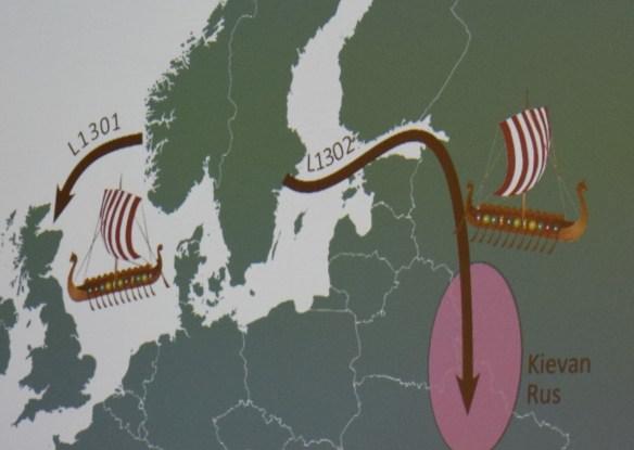 2015 ftdna sjolund map