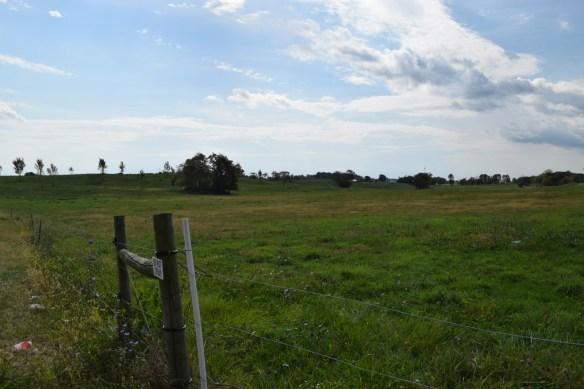 Lodowick's land
