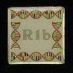 Kerchner R1b pin
