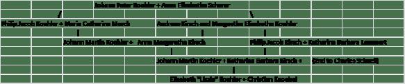 Koehler common pedigree