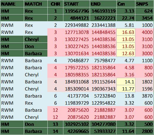 JDM match chart