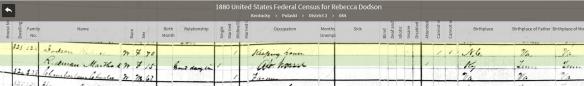 mary-1880-pulaski-census