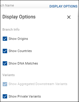 block tree display options.png