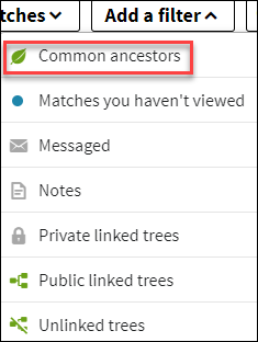 Ancestry common ancestors dropdown.png