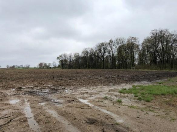 Hiram Ferverda land pipeline.jpg