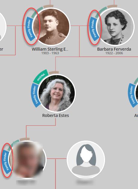 Glances Family Tree DNA tree