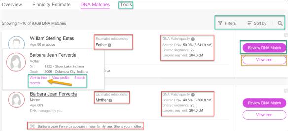 Glances MyHeritage matches