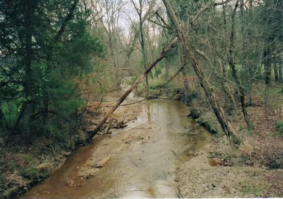William-Moore-creek.jpg