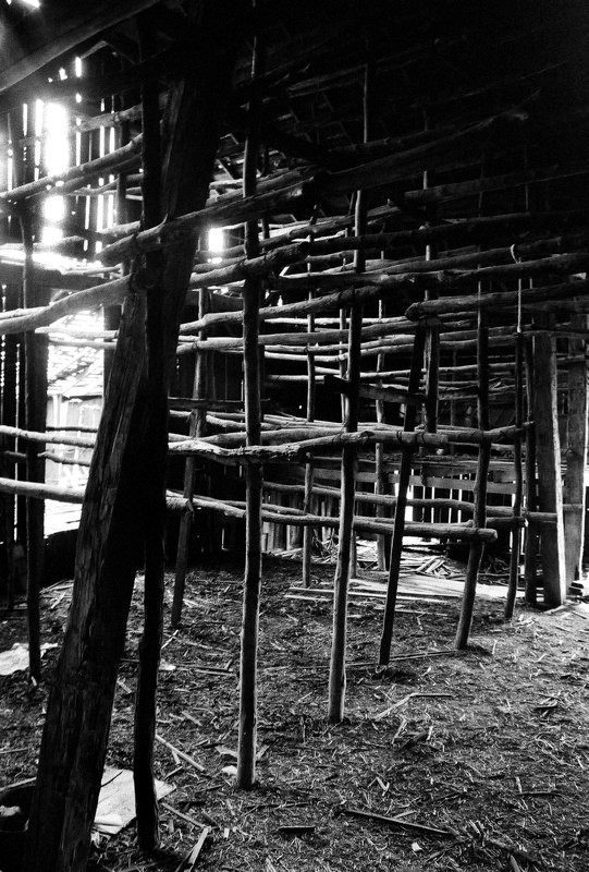 James Moore inside tobacco barn