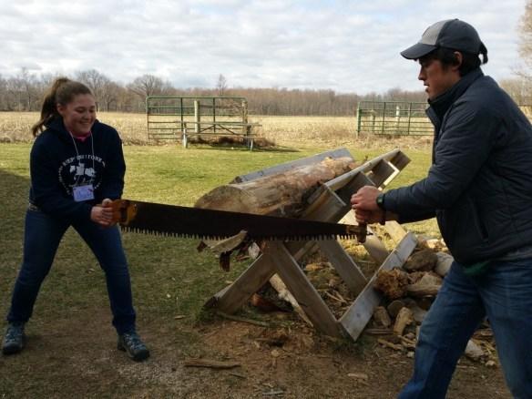 Phoebe sawing.jpg