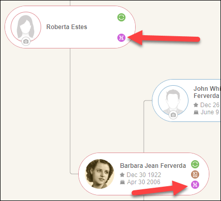 Triangulation MyHeritage tree.png