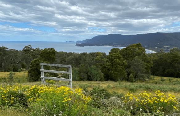 Tasmania overlook.png
