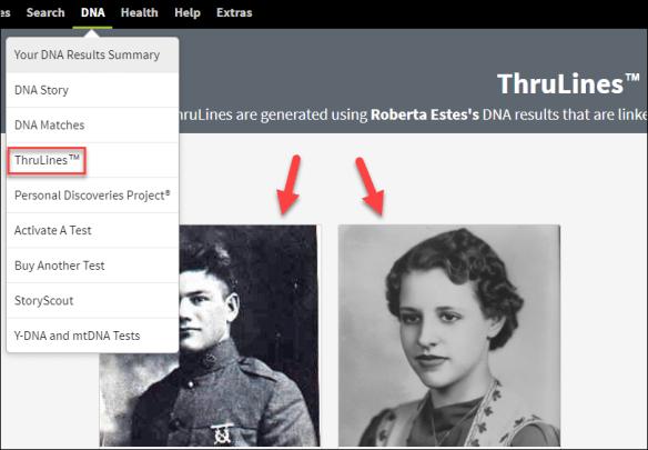 Ancestry thrulines