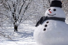 snow-man