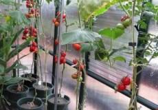 домашний огород отопление