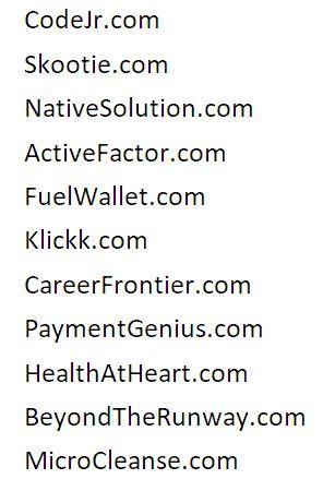 Brandable Insider Domain Review #14