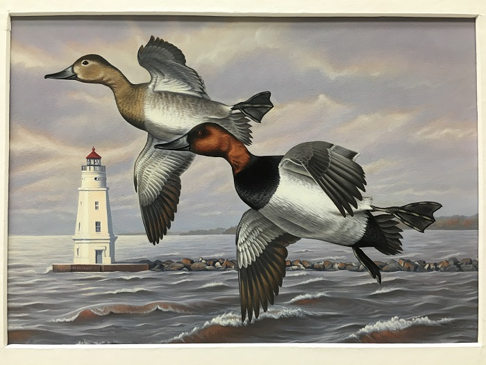 First place in the 2017 Waterfowl Stamp design contest was awarded to Sara Stack of Marengo.