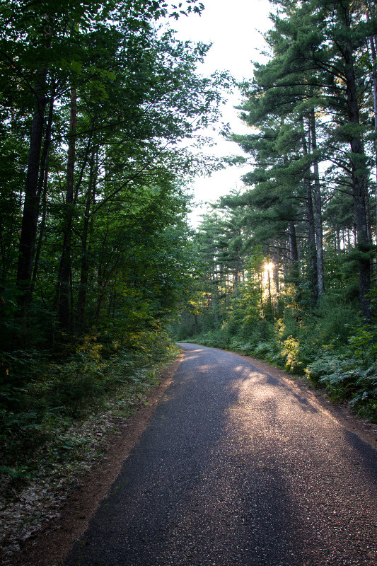 A new trail segment in the Heart of Vilas County Bike Trail system will connect this existing trail running from Boulder Junction to Manitowish Waters with a recently completed trail  - Photo credit: DNR