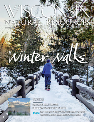 Cover of the Winter 2020 issue of the Wisconsin Natural Resources magazine.