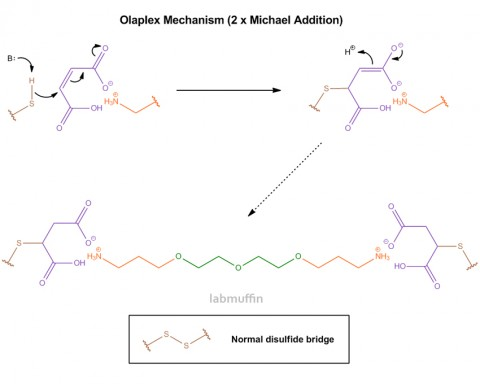 olaplex-mechanism