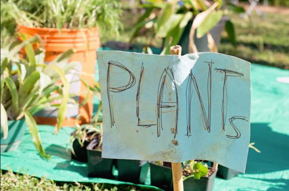 plantswap
